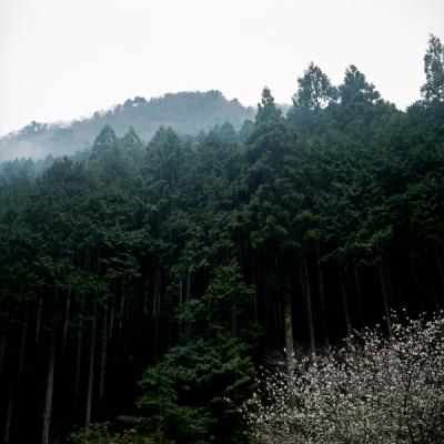 BR-TOKIORI-05